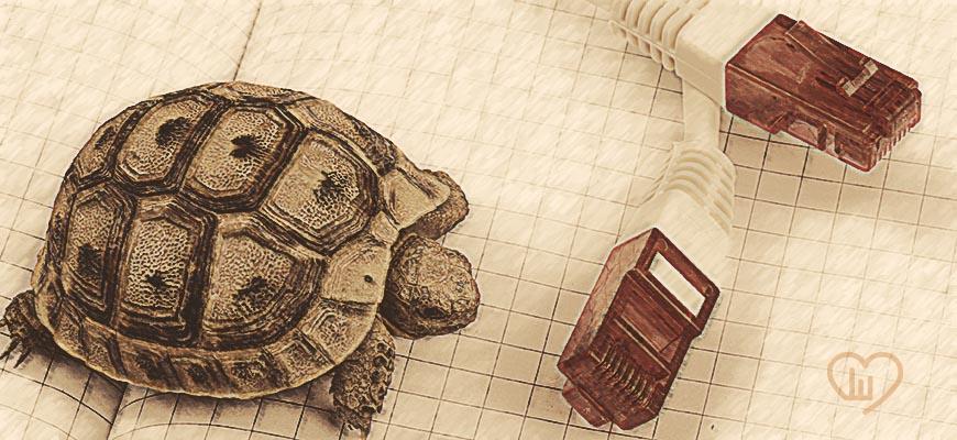 Digitalización de las empresas: la fábula de la liebre y la tortuga